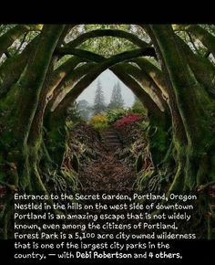 Secret Garden in Portland OR - Travel - # Secret . - Secret Garden in Portland, OR – Travel – - Oregon Travel, Portland Oregon Hikes, Oregon Coast Roadtrip, Usa Roadtrip, Vacation Places, Places To Travel, Us Travel Destinations, Summer Vacations, Camping Places