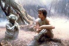 In George Lucas' classic <em>The Empire Strikes Back</em>, Yoda patiently tutors, challenges and imparts his wisdom to Luke Skywalker deep in the Dagobah swamps, sometimes while perched on the shoulder of his young Jedi-in-training. That scene depicts the Platonic ideal of personalized learning.