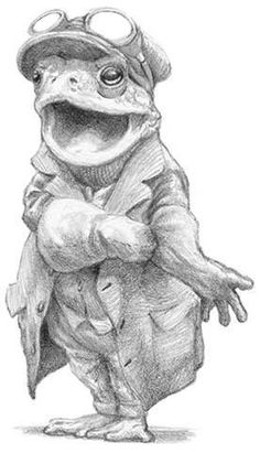 My personal favourite in this series of sketches. Mr Toad, Frog And Toad, Animal Sketches, Animal Drawings, Pencil Drawings, Art Drawings, Chris Dunn, Frog Art, Fairytale Art