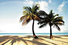 Antigua! http://www.thomascook.com/holidays/signature/caribbean-holidays/antigua-holidays/?utm_medium=soc&utm_source=pinterest&utm_campaign=engage&utm_content=posting