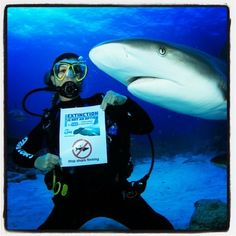 """.@Laura King 