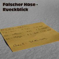 Falscher Hase - Rückblick (Dezember 2012) by falscherhase on #SoundCloud