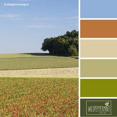 Farbpalette Sommer, Farbinspiration sommerlich // © wildpeppermint-design.de