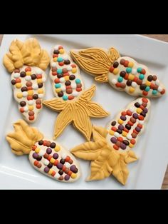 fall cookies, corn fall, indian corn, color, fallhalloween decor, autumn cooki, corn cookies, cake cooki, decor cooki