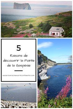 5 raisons de découvrir la Pointe de la #Gaspésie #Québec Acadie, Canada, Le Point, Continents, Road Trip, Destinations, Camping, Travel, Roots