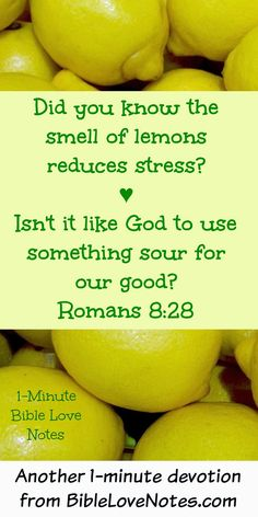 This 1-minute devotion talks about the benefits of the Lemon and the way God uses sour things for our good.