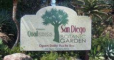 San Diego Botanical Garden in Encinitas is a year-round garden lovers paradise.