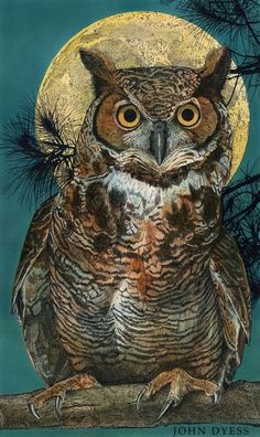 'Great Horned Owl' by Studio Dyess