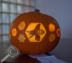 Bee Pumpkin by the University of Guelph Insect Systematics Lab Halloween Activities, Halloween Themes, Halloween Crafts, Halloween Pumpkin Designs, Halloween Pumpkins, Pumpkin Jack, Pumpkin Spice, Pumpkin Decorating, Decorating Ideas