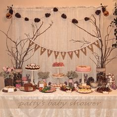 If Stones Could Talk... Coupled With Some Baby Talk: Woodland Theme Baby