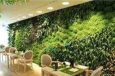 Xu hướng dùng tường cây giả trong nhà tạo không gian tươi mát, sang trọng, hiện đại không tốn chi phí chăm bón như cây thật, được nhiều người tin dùng bởi vẻ đẹp mà chính...