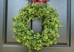 Boxwood Green Wreath Outdoor