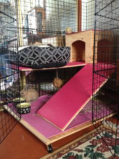 Hazel's diy C Made out of 2 you Matts, 1 sheet untreated plywood, 200 zip ties, 2 boxes of 6 cube storage, 2 hinges, 3 clips. All for just $80, the same price as a small rabbit cage. She loves it!