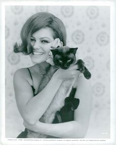 Vintage photo of Claudia Cardinale and her cat. | eBay