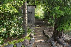 Metsäpuutarhassa polku kulkee kuusten katveessa. - A path winds by spruces in a woodland garden. Photo Raija Kolehmainen http://www.viherpiha.fi/pihasuunnittelu/metsapuutarhassa-saa-leikkia