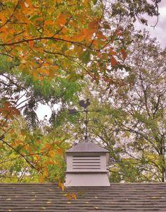 Early autumn cupola