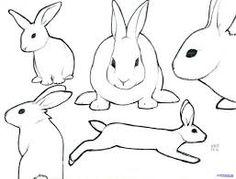 Image result for rabbit outline drawing