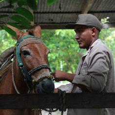 #Apure #Venezuela #Llanero #Llanos #igersvenezuela #igersven #instahub #instamood #