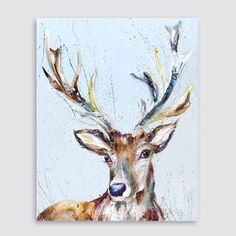 Contemporary Animal Art and Homeware by licensed artist von NicolaJaneRowlesART Deer Painting, Watercolor Art, Photo Art, Animal Art, Animal Drawings, Drawings, Oil Painting, Cottage Art, Animal Paintings