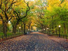 #CentralPark,New York City