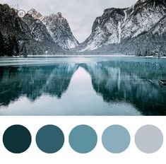 #designinspiration #love #prettythings #blue #graphic #design #landscape #search #the #color #christmas #palettes #winter #graphicdesign #cold #forest#imagine #snow #mountain #designlovers #ideas #colors #instatravel #colorsplash #cold#travel #holiday #nature #sea #water