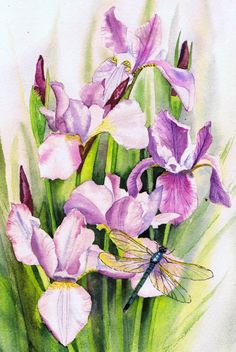 Pink Irises print dragonfly print pink wall art by HornerArtStudio £20