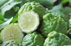 ベルガモットはイタリアを原産とする柑橘類で、香水やアロマ、ハーブとして利用されていますが、最近の研究でHDL(善玉コレステロール)を増やす働きがあることがわかりました。他のかんきつ類と比べてフラボノイドの種類と量が多く、その複合体が驚異的な治療効果を引き出しています。
