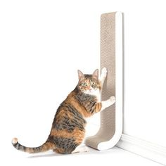 Cat scratching posts help keep our kitties healthy, and this one from www.coolcattreeplans.com sure is nice!