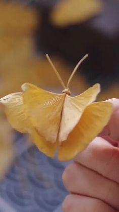 DIY Ginkgo Leaves Butterfly