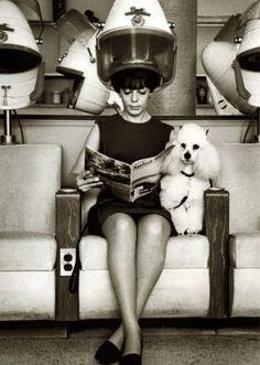 Art for hair salon: At the vintage  hair salon......