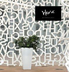Color blanco: pureza y elegancia.