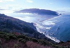 Klamath river estuary Situados al norte de San Francisco, en una región montañosa paralela a la costa del Pacífico, estos parques están cubiertos por un magnífico bosque de secuoyas, que son los árboles más altos e impresionantes del mundo. La fauna marina y terrestre del sitio es también notable, con especies como el león marino y el águila calva, o el pelícano pardo de California que se halla en peligro de extinción