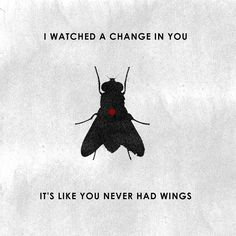 """""""I set you down on the glass, I pulled of your wings... And I laughed."""" - Deftones"""
