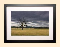 Original Photo Print parkland art landscape by AmbiancePhotography Photographic Prints, Landscape, The Originals, Frame, Photography, Etsy, Vintage, Art, Picture Frame