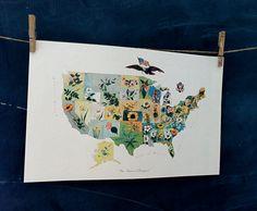 vintage map United States Flower Map  circa 1911 by OdeToJune