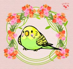Nature sounds: Parakeets Singing, Talking, Chirping, kissing each other. Budgies talking to each other. Budgies, Parrots, Cockatiel, Bird Gif, Snake Art, Bird Crafts, Cute Doodles, Cute Animal Drawings, Bird Pictures