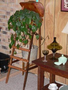 unwanted tobacco sticks into a cute tobacco stick grapevine tree Craft Stick Crafts, Crafts To Sell, Wood Crafts, Crafts For Kids, Paper Craft, Craft Ideas, Tobacco Sticks, Turtle Crafts, Tobacco Basket