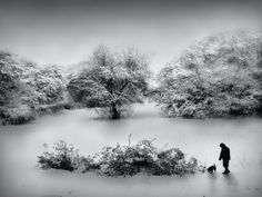 Winter Wonderland by Jenny Woodward