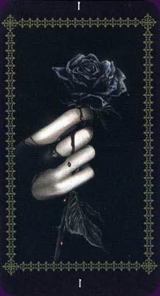 Favole Tarot - Love the beautiful dark art