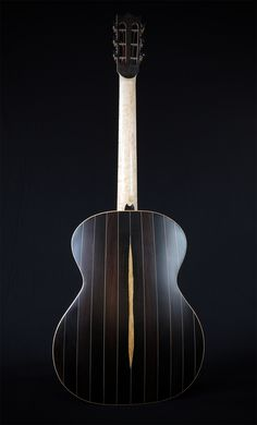 David Antony Reid VaultBack, steel string acoustic. African Blackwood, birdseye maple.