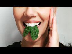 Elimina el mal aliento en 5 minutos, con este sencillo remedio super efectivo! - YouTube