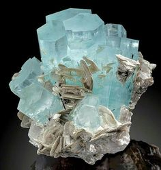 ~ GEMS & MINERALS ~ Previous pinner writes: Gemmy blue Aquamarine crystals with accenting Muscovite blades on Albite Chumar Bakhoor, Northern Pakistan