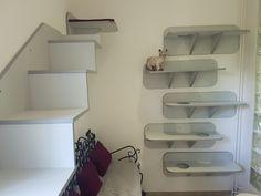 Pokoj 2 - VIP Apartmá Cat Hotel, Toilet Paper, Vip, Bookcase, Shelves, Luxury, Cats, Home Decor, Shelving