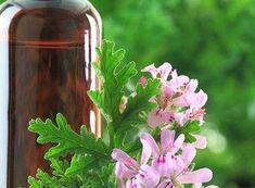 Aceite Esencial de Geranio Rosa