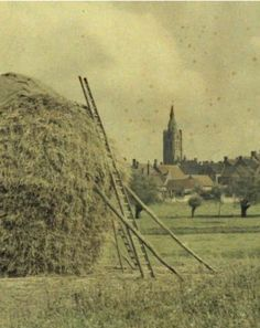 Paisagem rural da Bélgica - 1917