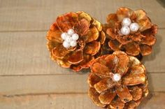 How to Make Simple Pinecone Flowers