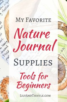 Nature Journal supplies for beginners. These are my favorites!