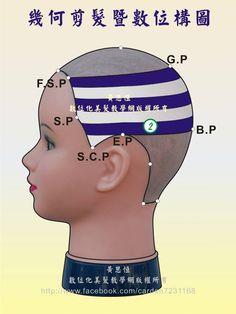 橫髮片劃分(Horizontal parting)在第2設計區的構圖-左側呈現