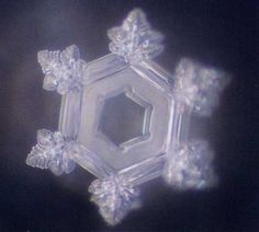 water crystal after playing bethoveen fifth sympnony for it