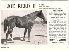 Joe Reed Ii Quarter Horse  ch  AQHA # 0000985  AA, SI-85, 1-1-0-0, $0 AQHA Hall of Fame Inductee of 1994 World Champion Racing Stallion from 1942 to 1946 ROM Perf., 1943 RC, Offspring Record: Reg. foals 347, -Sire of LEO (1940), World Champion Racehorse, by Little Fanny Halt.pts. earned: 49 Perf.pts. earned: 79 Perf. ROM's: 4 Race Earnings: $272,246 Stakes Winners: 9 90+ ROM's: 11 Race ROM's: 66 Superior Race: 6 Race Offspring Wins: 479 AQHA offspring NCHA LTE: $5,187 AQHA offspring NSBA…
